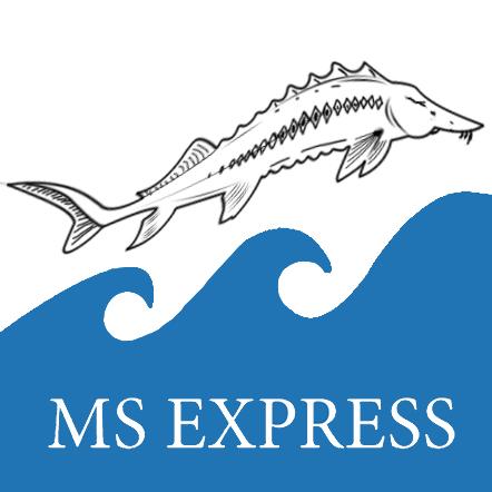 логотип ms express | по продаже русских продуктов | картика форме осетры